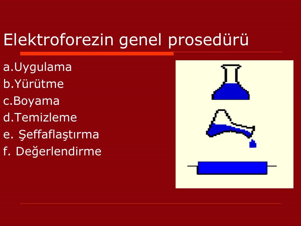 Elektroforezin genel prosedürü
