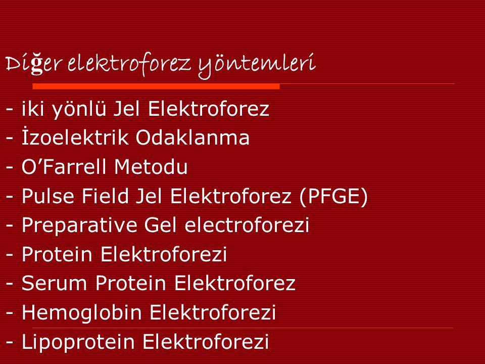 Diğer elektroforez yöntemleri
