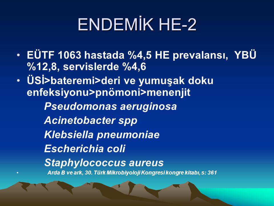 ENDEMİK HE-2 EÜTF 1063 hastada %4,5 HE prevalansı, YBÜ %12,8, servislerde %4,6. ÜSİ>bateremi>deri ve yumuşak doku enfeksiyonu>pnömoni>menenjit.
