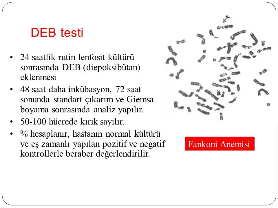 DEB testi 24 saatlik rutin lenfosit kültürü sonrasında DEB (diepoksibütan) eklenmesi.