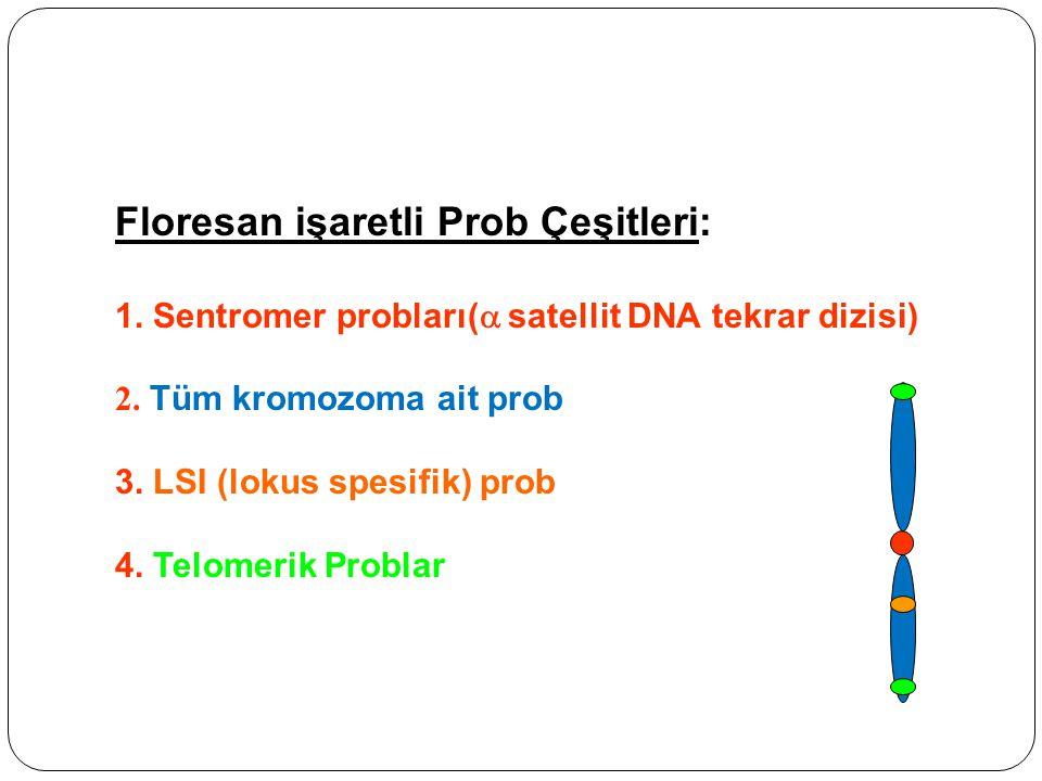 Floresan işaretli Prob Çeşitleri: