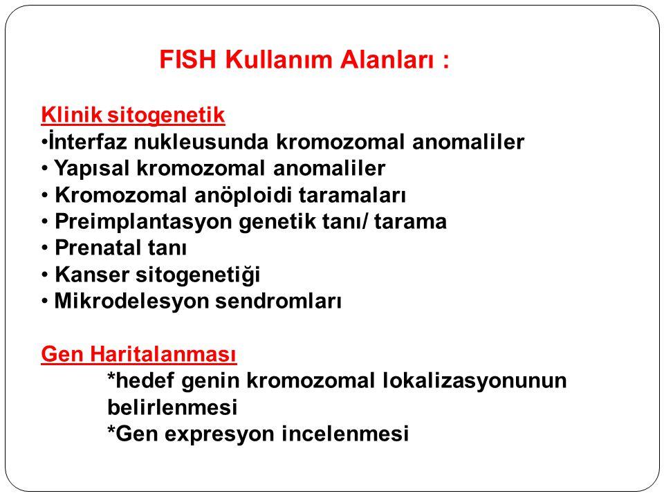 FISH Kullanım Alanları :