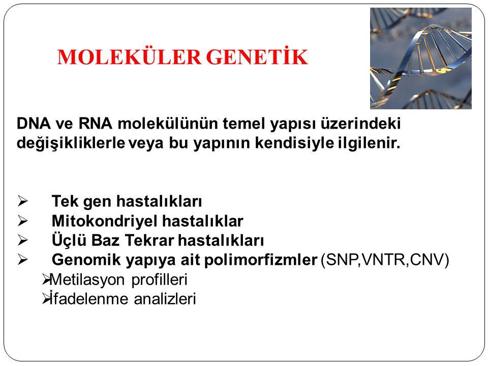 MOLEKÜLER GENETİK DNA ve RNA molekülünün temel yapısı üzerindeki değişikliklerle veya bu yapının kendisiyle ilgilenir.