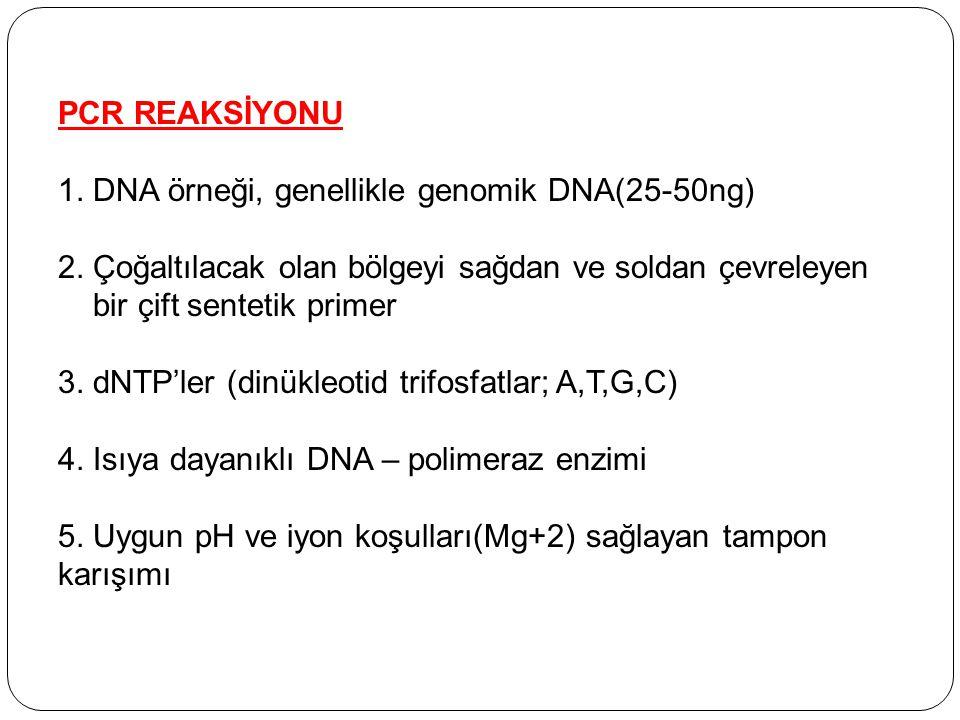 PCR REAKSİYONU 1. DNA örneği, genellikle genomik DNA(25-50ng) 2. Çoğaltılacak olan bölgeyi sağdan ve soldan çevreleyen.