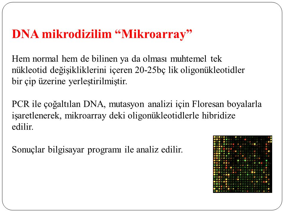 DNA mikrodizilim Mikroarray