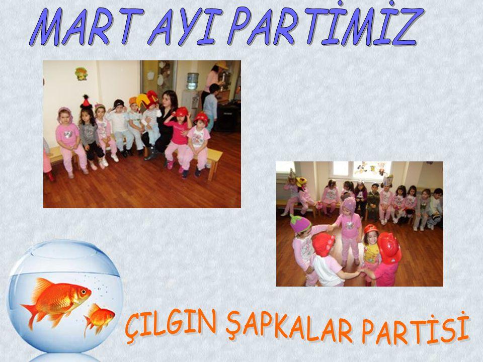 ÇILGIN ŞAPKALAR PARTİSİ