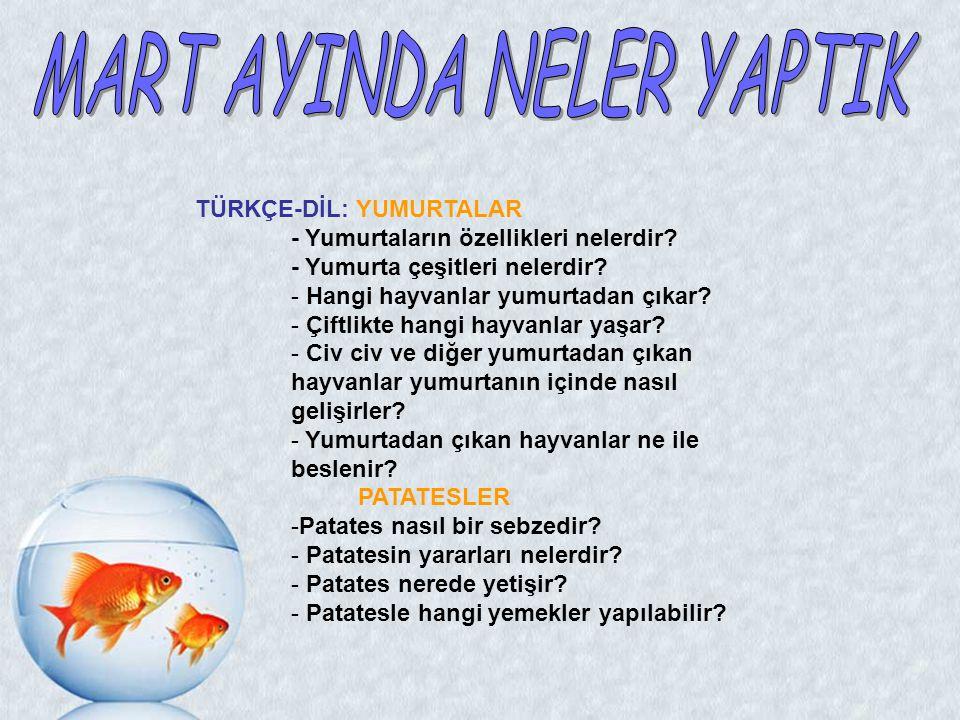 MART AYINDA NELER YAPTIK