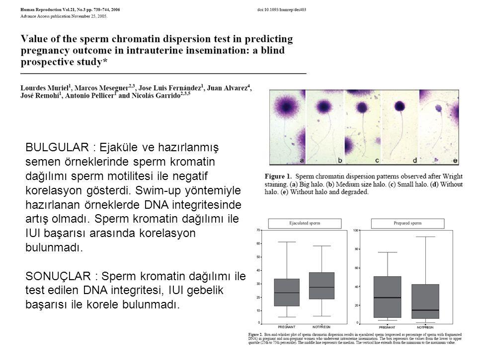 BULGULAR : Ejaküle ve hazırlanmış semen örneklerinde sperm kromatin dağılımı sperm motilitesi ile negatif korelasyon gösterdi. Swim-up yöntemiyle hazırlanan örneklerde DNA integritesinde artış olmadı. Sperm kromatin dağılımı ile IUI başarısı arasında korelasyon bulunmadı.