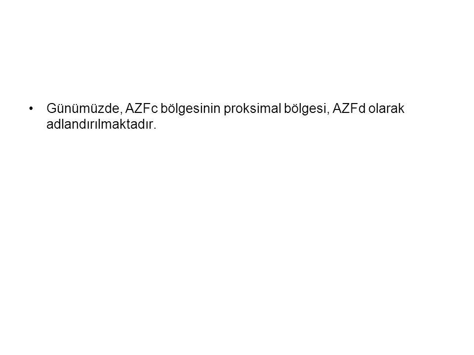 Günümüzde, AZFc bölgesinin proksimal bölgesi, AZFd olarak adlandırılmaktadır.