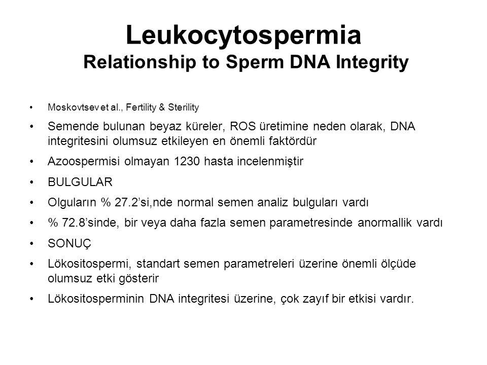 Leukocytospermia Relationship to Sperm DNA Integrity