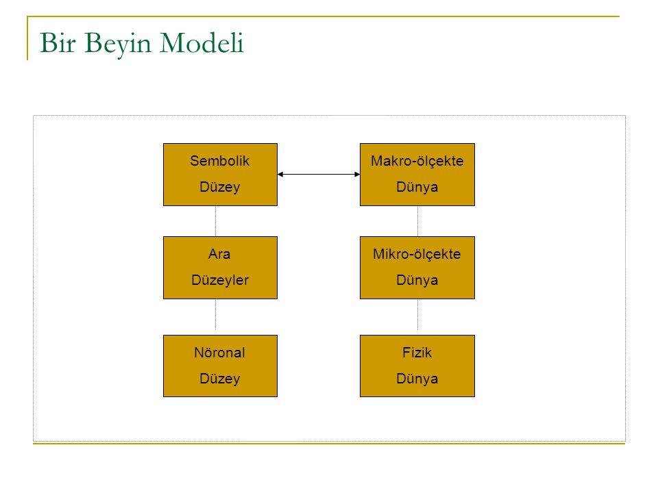 Bir Beyin Modeli Sembolik Düzey Makro-ölçekte Dünya Ara Düzeyler