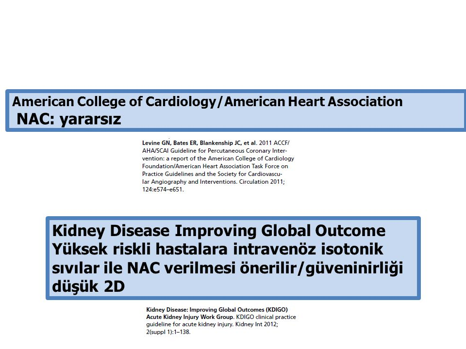 Kidney Disease Improving Global Outcome