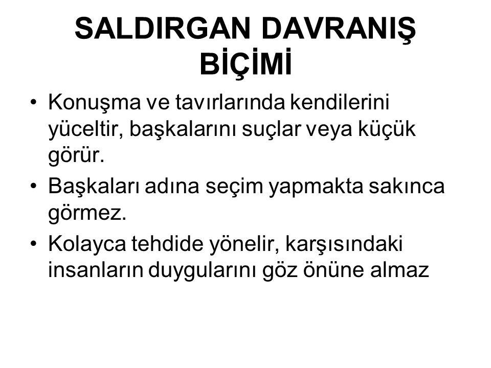 SALDIRGAN DAVRANIŞ BİÇİMİ