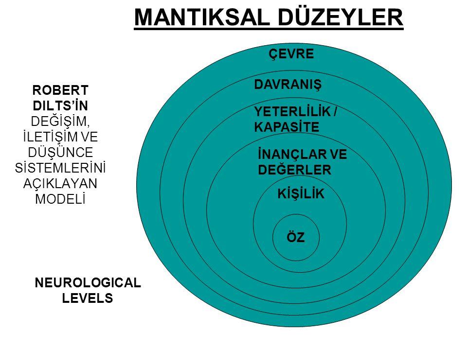 MANTIKSAL DÜZEYLER ÇEVRE DAVRANIŞ