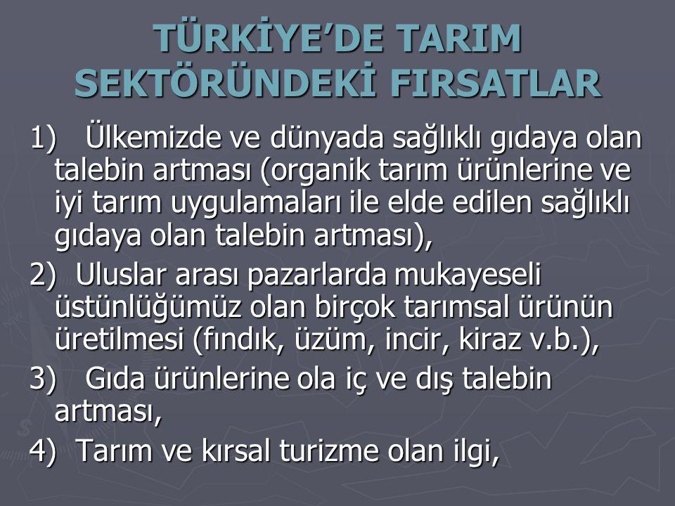 TÜRKİYE'DE TARIM SEKTÖRÜNDEKİ FIRSATLAR
