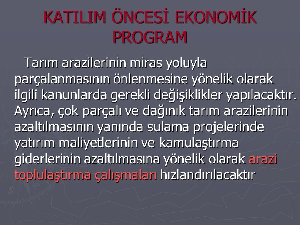 KATILIM ÖNCESİ EKONOMİK PROGRAM