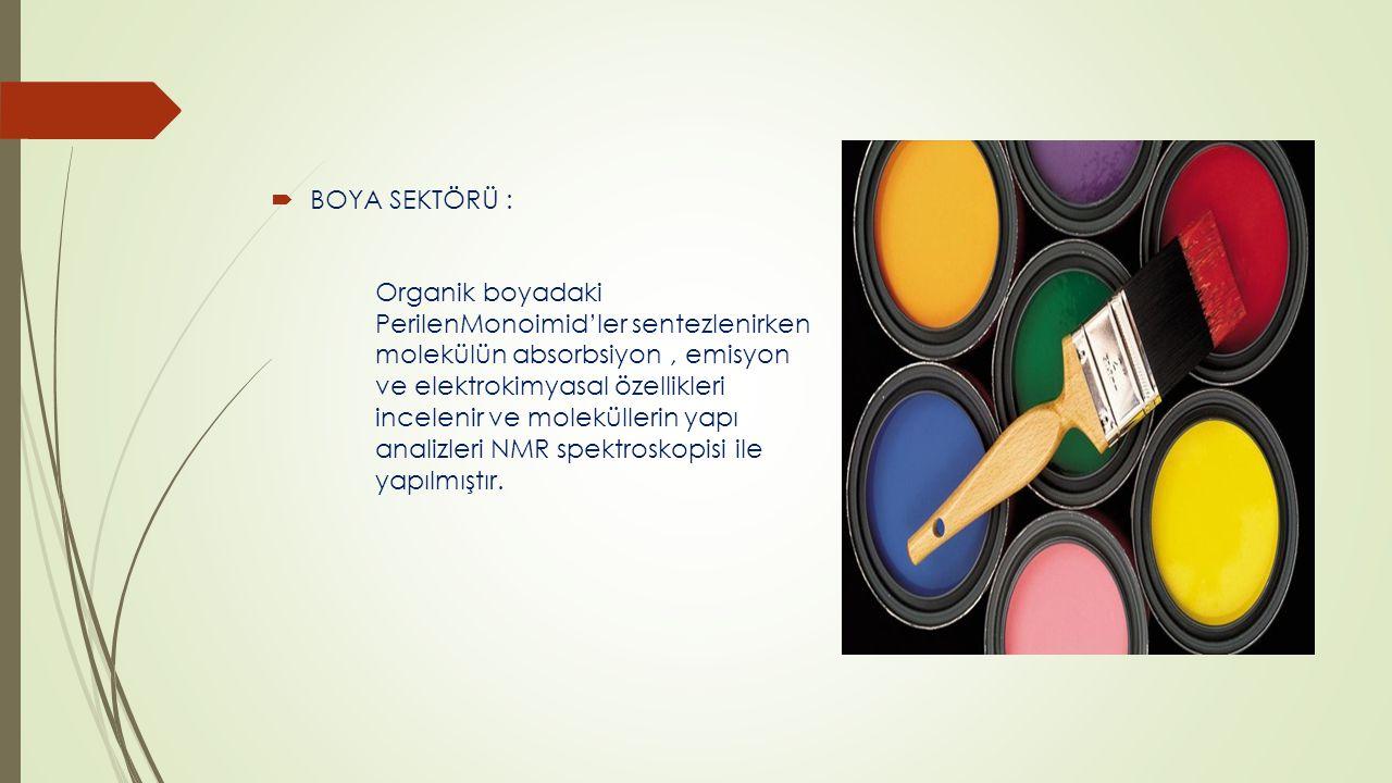 BOYA SEKTÖRÜ :