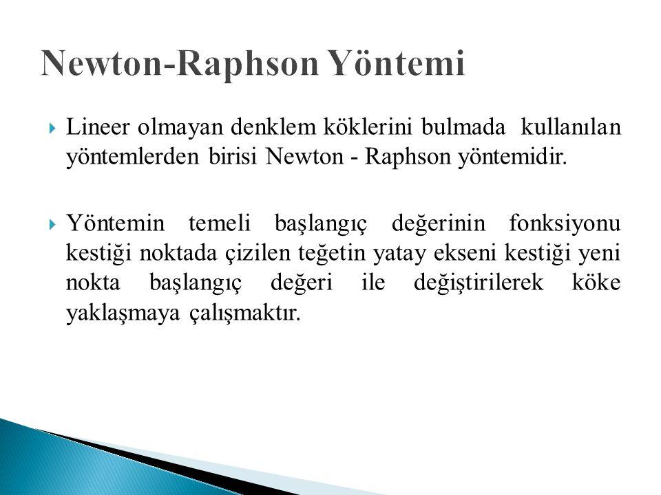 Newton-Raphson Yöntemi