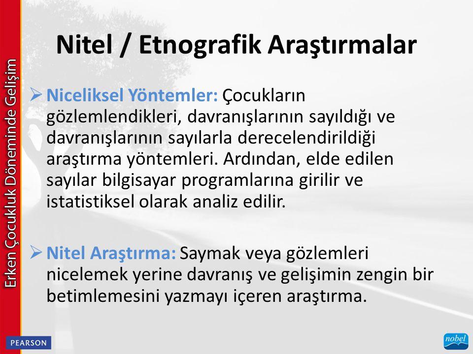 Nitel / Etnografik Araştırmalar