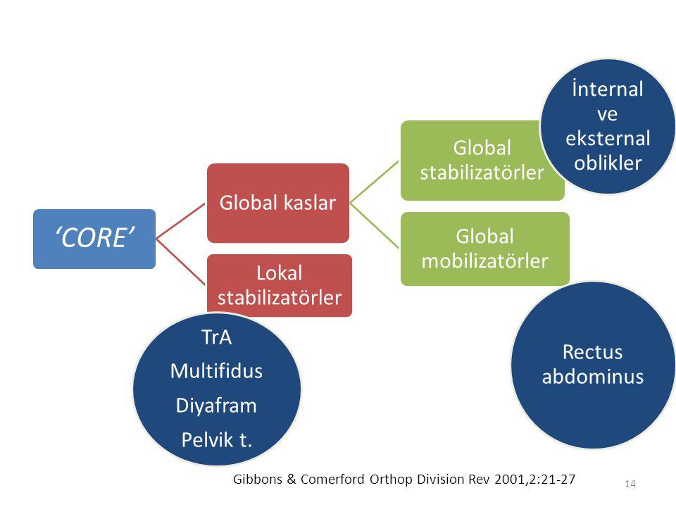 'CORE' Global kaslar Global stabilizatörler Global mobilizatörler