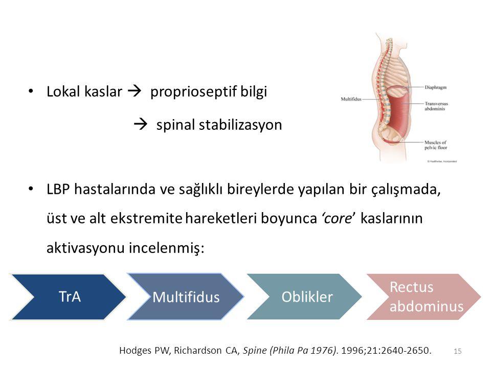 Lokal kaslar  proprioseptif bilgi  spinal stabilizasyon