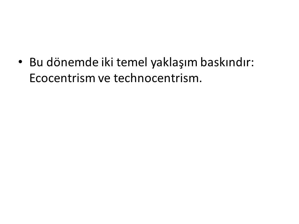 Bu dönemde iki temel yaklaşım baskındır: Ecocentrism ve technocentrism.