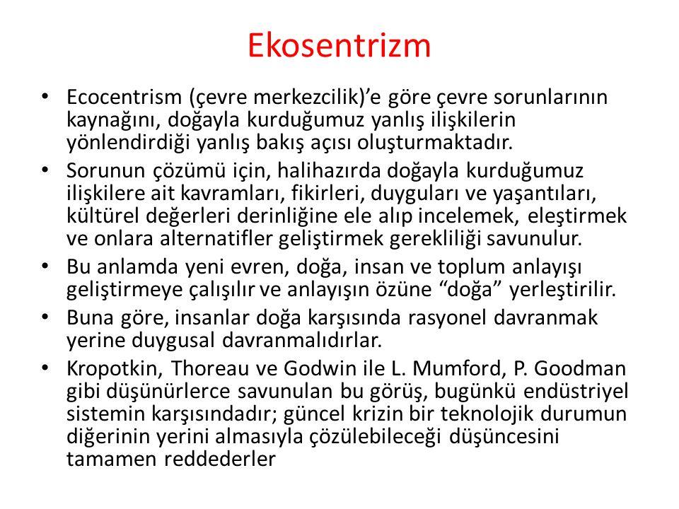 Ekosentrizm
