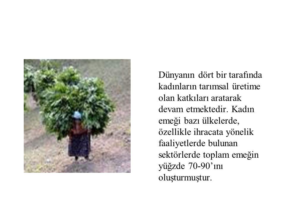 Dünyanın dört bir tarafında kadınların tarımsal üretime olan katkıları aratarak devam etmektedir.