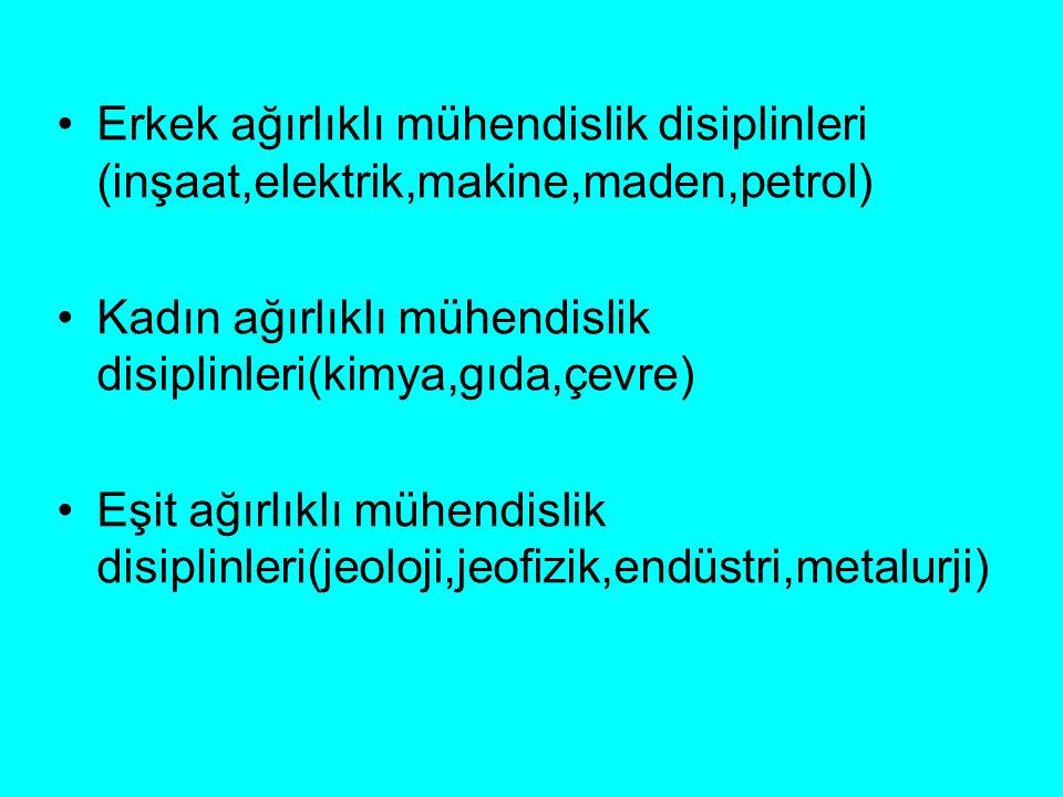 Erkek ağırlıklı mühendislik disiplinleri (inşaat,elektrik,makine,maden,petrol)
