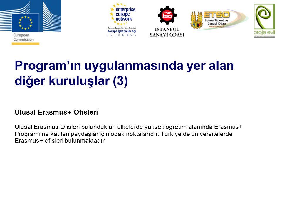 Program'ın uygulanmasında yer alan diğer kuruluşlar (3)