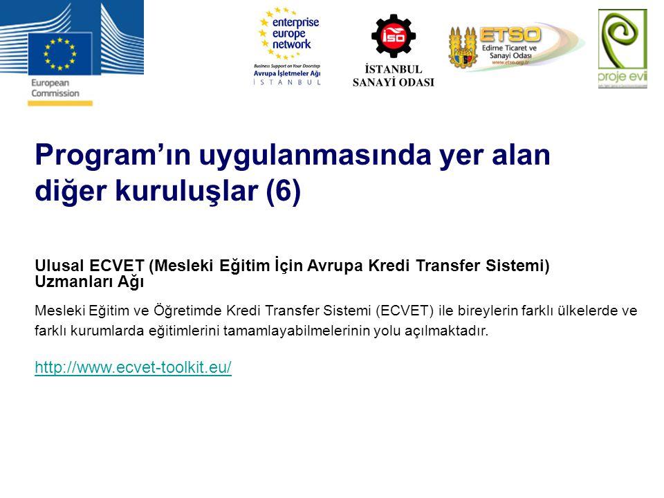 Program'ın uygulanmasında yer alan diğer kuruluşlar (6)