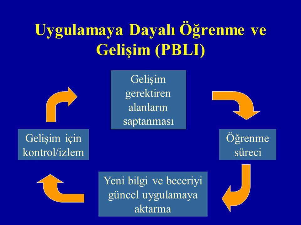 Uygulamaya Dayalı Öğrenme ve Gelişim (PBLI)
