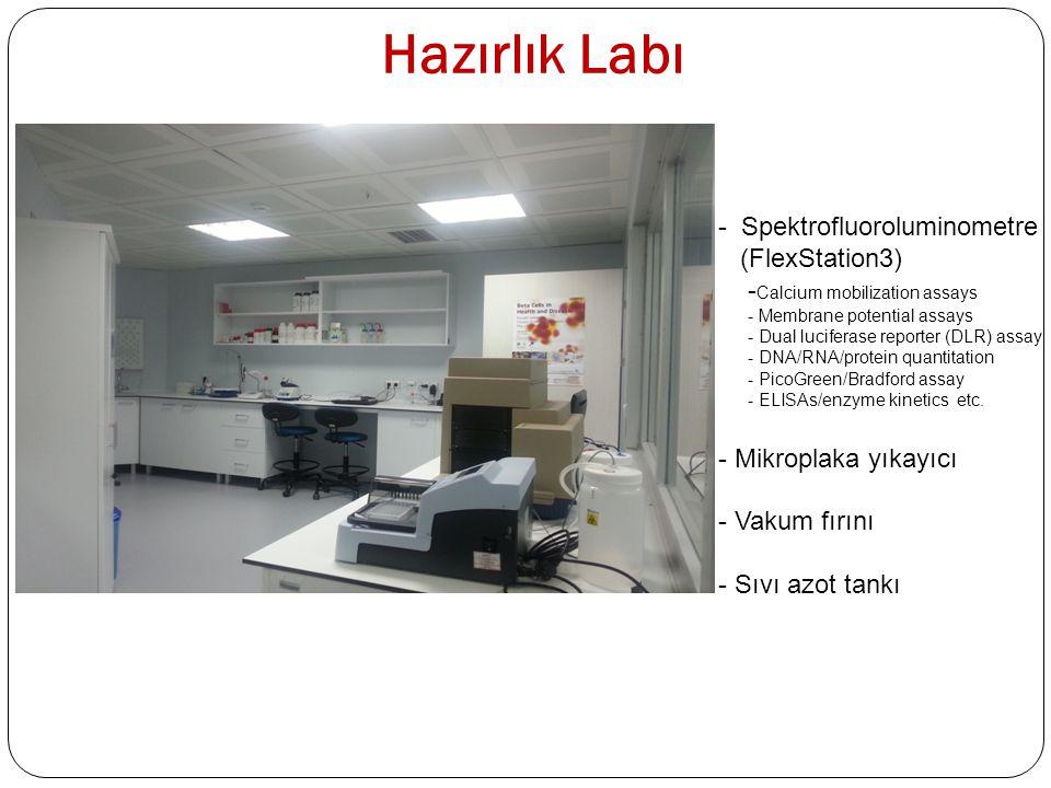 Hazırlık Labı Spektrofluoroluminometre (FlexStation3)