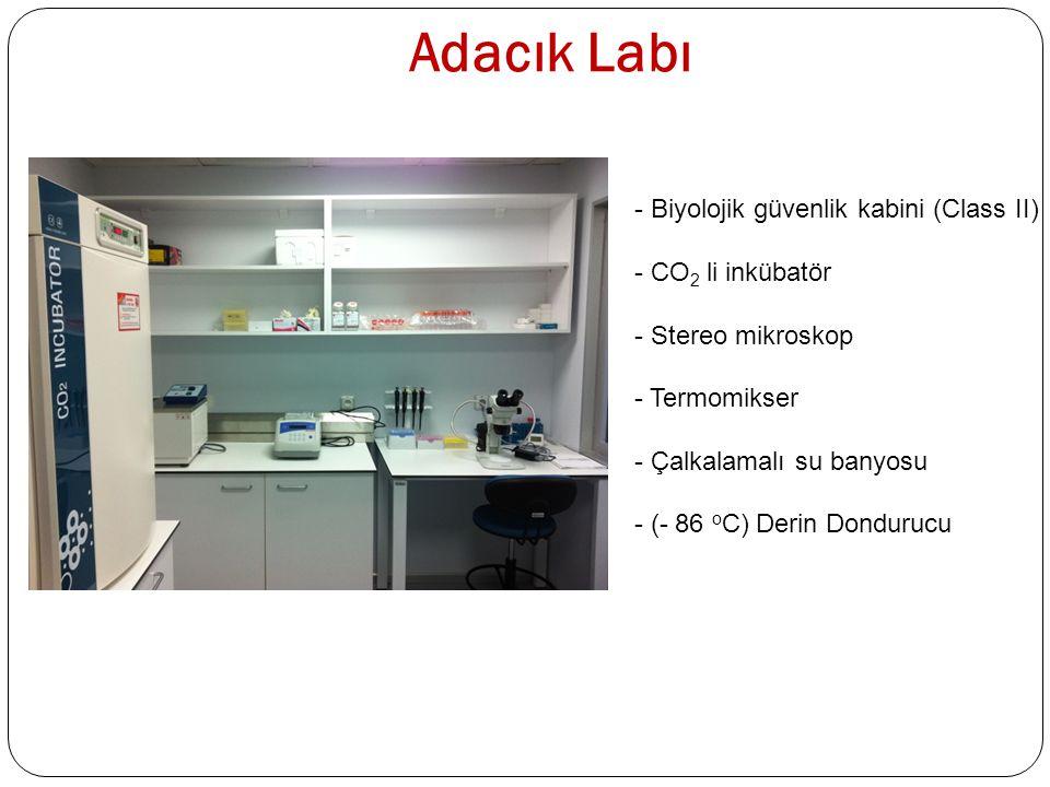 Adacık Labı Biyolojik güvenlik kabini (Class II) CO2 li inkübatör
