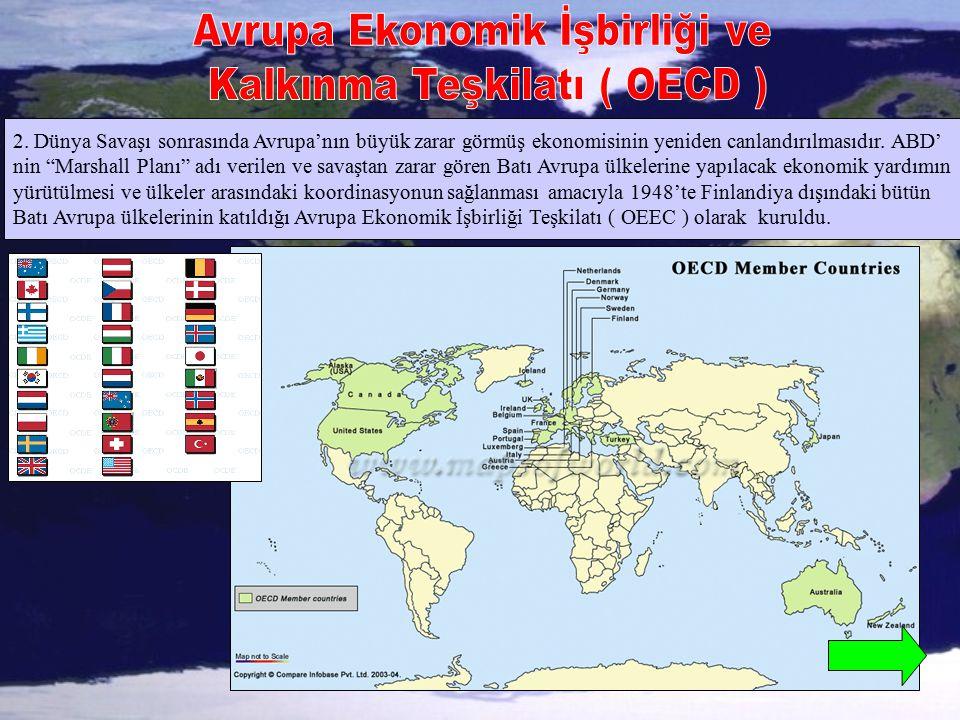 Avrupa Ekonomik İşbirliği ve Kalkınma Teşkilatı ( OECD )