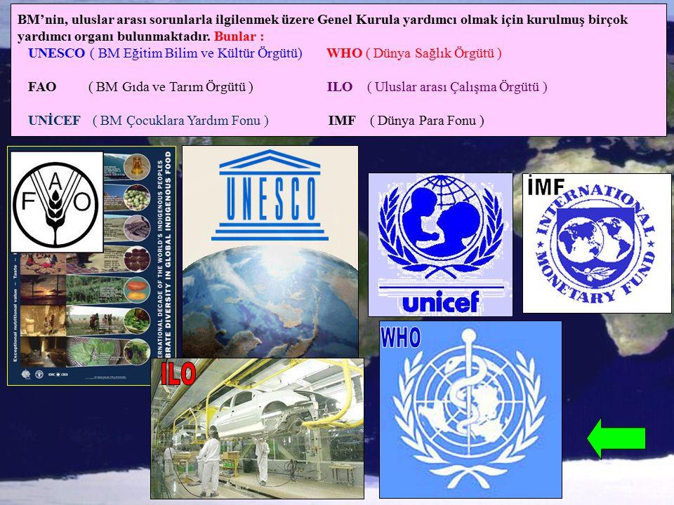 BM'nin, uluslar arası sorunlarla ilgilenmek üzere Genel Kurula yardımcı olmak için kurulmuş birçok