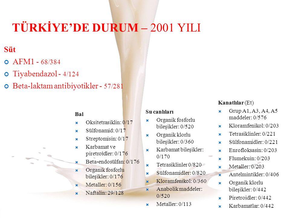 TÜRKİYE'DE DURUM – 2001 YILI