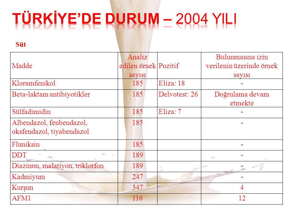 TÜRKİYE'DE DURUM – 2004 YILI