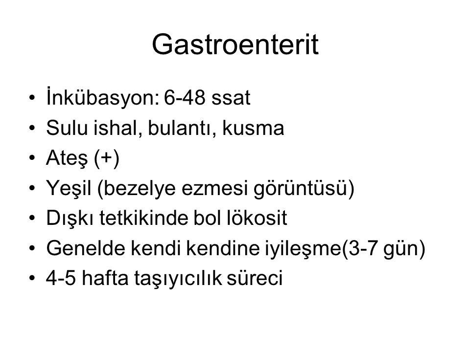 Gastroenterit İnkübasyon: 6-48 ssat Sulu ishal, bulantı, kusma