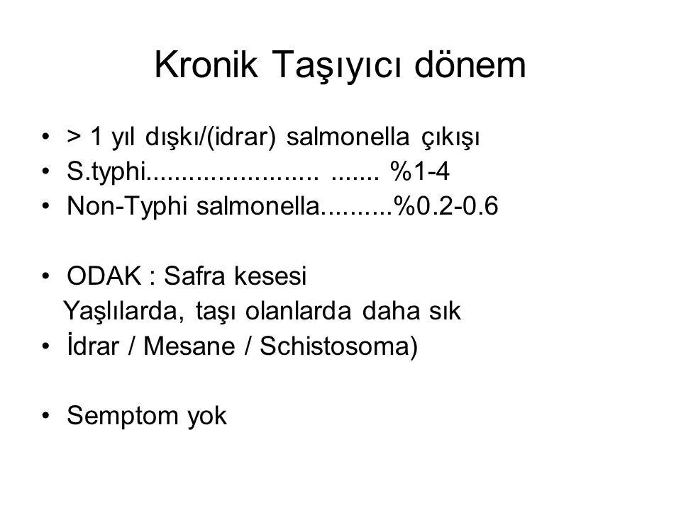 Kronik Taşıyıcı dönem > 1 yıl dışkı/(idrar) salmonella çıkışı