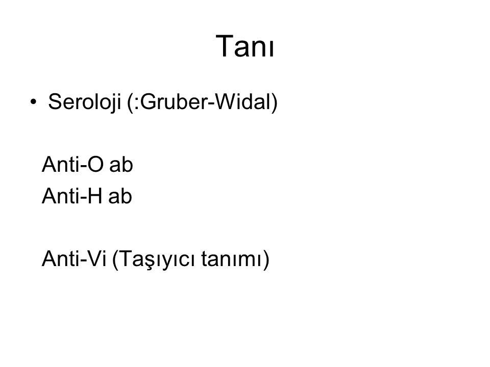 Tanı Seroloji (:Gruber-Widal) Anti-O ab Anti-H ab