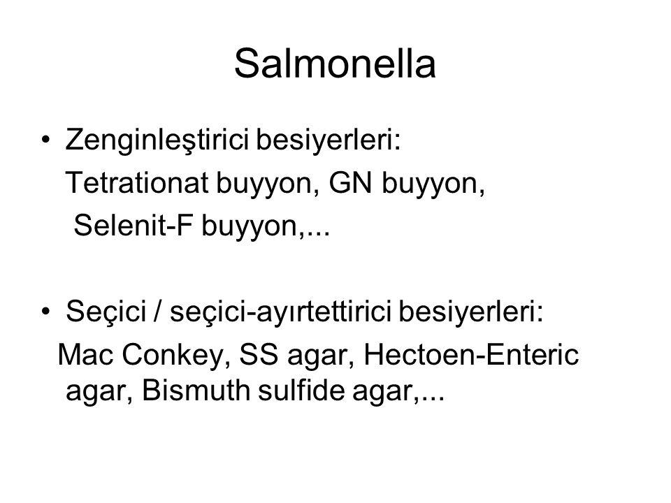 Salmonella Zenginleştirici besiyerleri: Tetrationat buyyon, GN buyyon,
