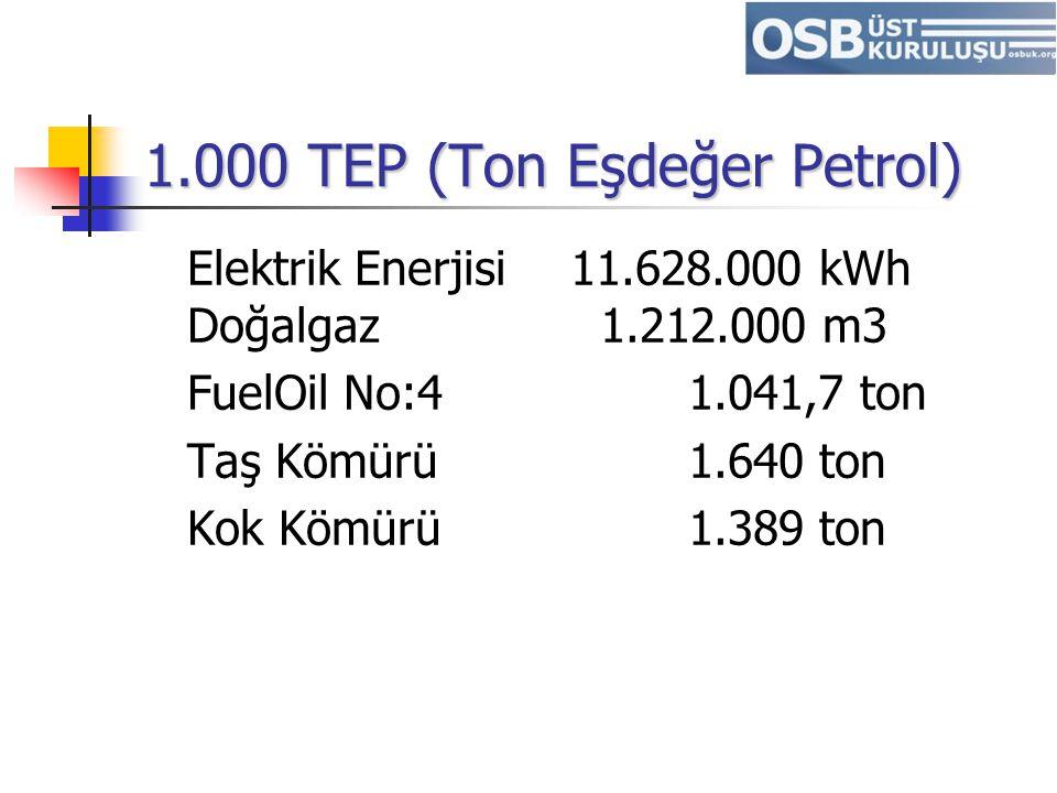 1.000 TEP (Ton Eşdeğer Petrol)