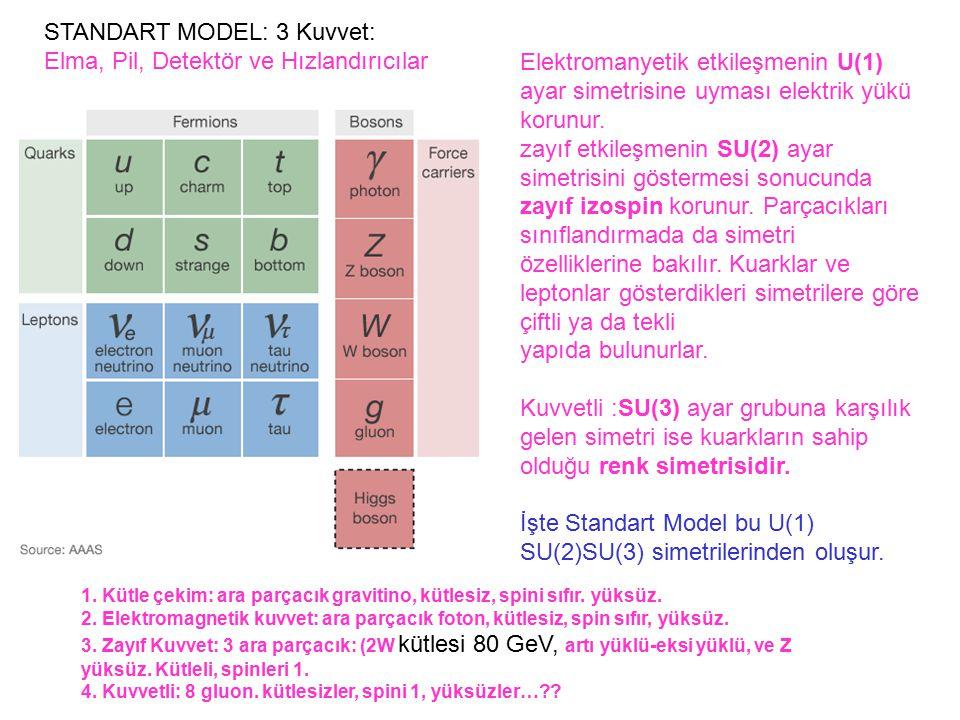 STANDART MODEL: 3 Kuvvet: Elma, Pil, Detektör ve Hızlandırıcılar