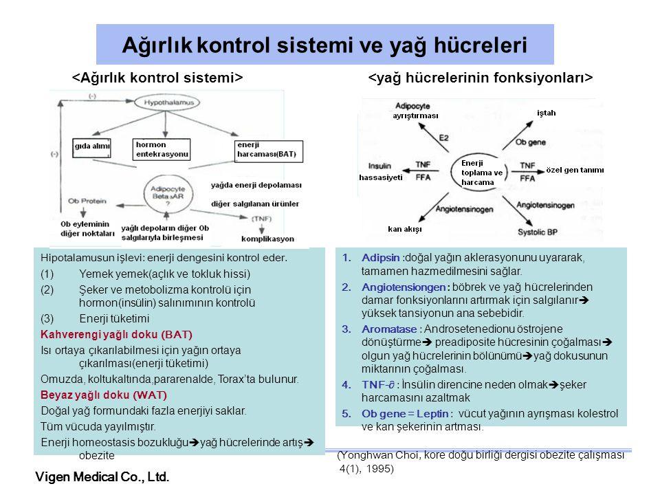 Ağırlık kontrol sistemi ve yağ hücreleri