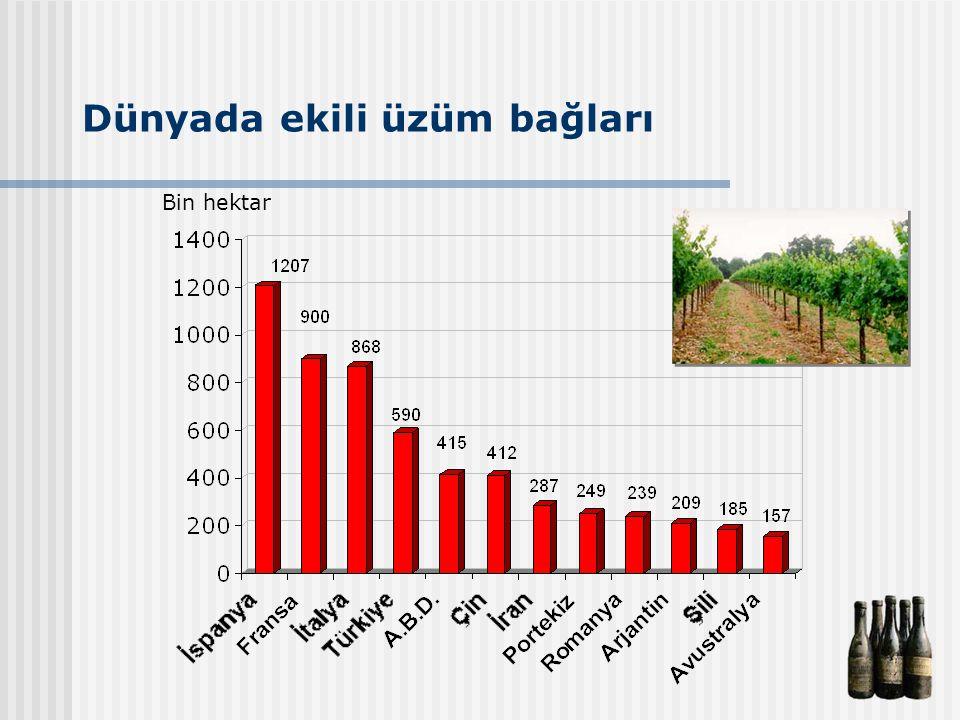 Dünyada ekili üzüm bağları