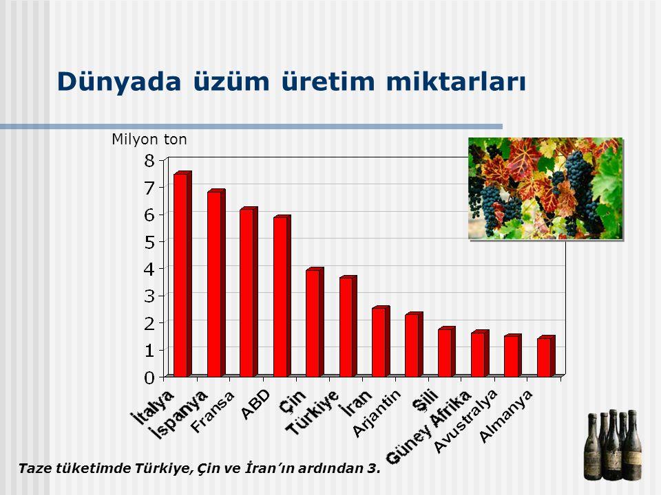 Dünyada üzüm üretim miktarları