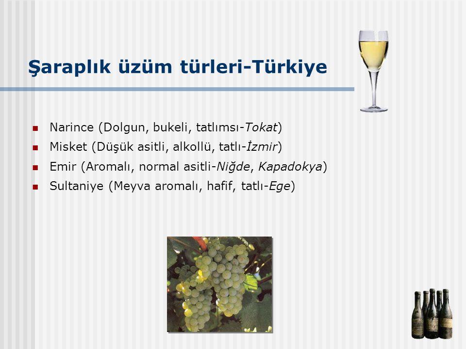 Şaraplık üzüm türleri-Türkiye