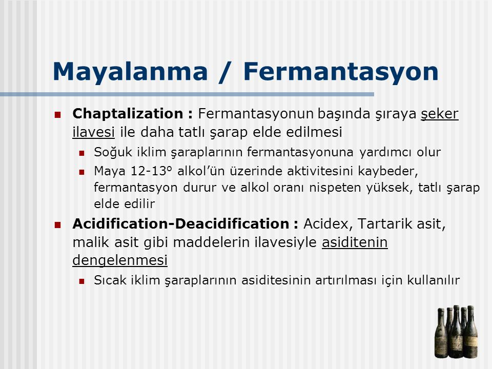 Mayalanma / Fermantasyon