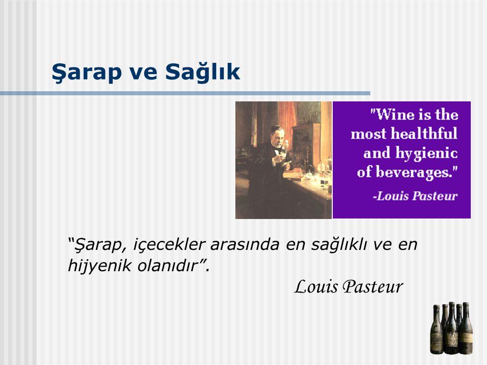 Şarap ve Sağlık Şarap, içecekler arasında en sağlıklı ve en hijyenik olanıdır . Louis Pasteur